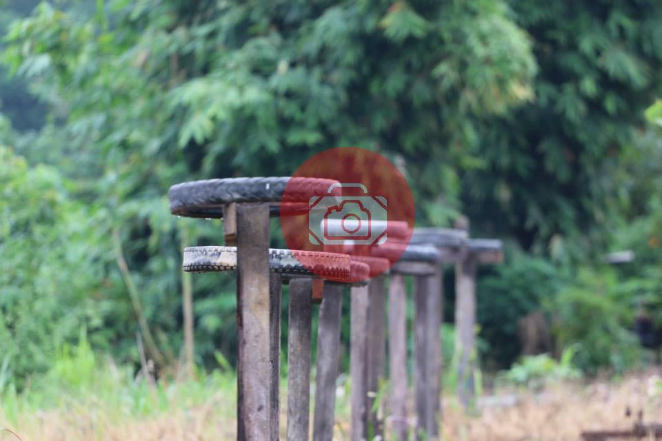 Pikenik Tiang-pikenik Tips Berkelana di Kelay Traveling  vacation travel destination tips traveling ke dayak tips berkelana di Kelay Tanjung Redep menjelajah kelay Kelay Kalimantan Timur Dayak berkelana di kelay Berau adventure